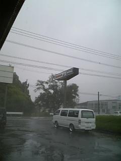 台風ウサギ